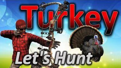 TheHunter_Let's_Hunt_TURKEY_(big_turkey_67.3_included)