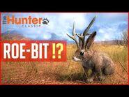 ROE-BIT !? - theHunter Classic