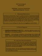 Justinian Chamberlain Psychological Assessment