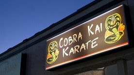 Cobra Kai Dojo Sign