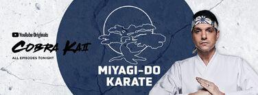 S2 Miyagi Do Banner