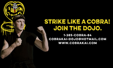 Cobra Kai Dojo Recruit