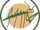 Locust Valley Karate Club