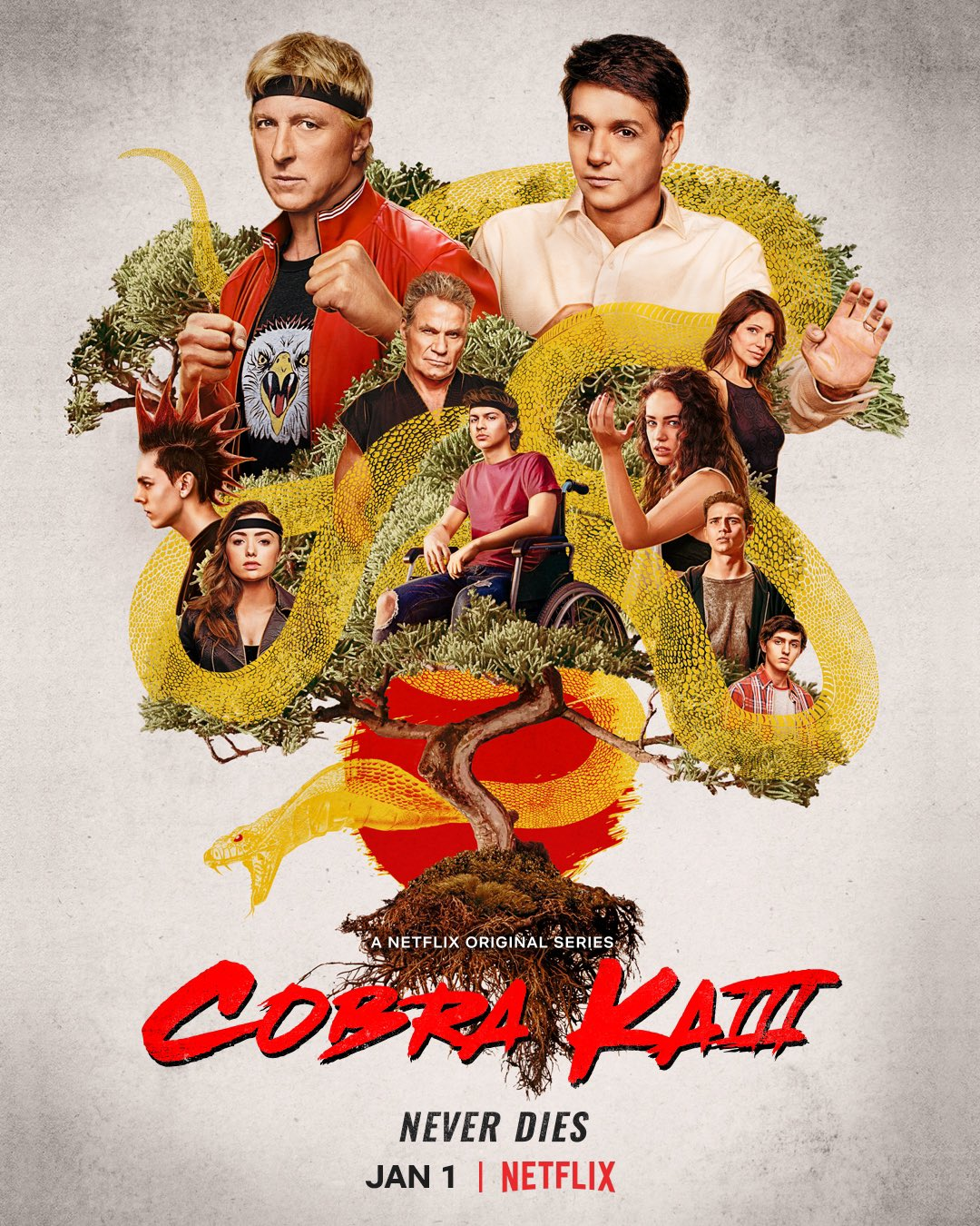 Cobra Kai Season 3 The Karate Kid Wiki Fandom We hope you enjoy our growing collection of hd images to use as a background or home screen for. cobra kai season 3 the karate kid