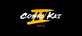 Cobra Kai (Season 4)
