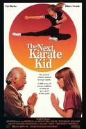 The Next Karate Kid - Portada