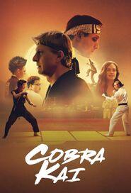 Cobra Kai Netflix Poster
