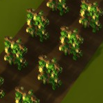 Pea field.png