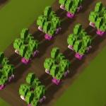 Turnip field.png