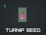 Turnip seed.png