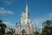 The-magic-kingdom-11-11-10-kc.jpg