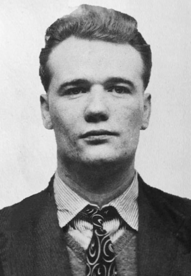 Albert Donoghue