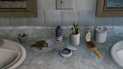 Joels house bathroom3 toiletries