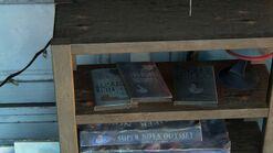 Ellies house - pun books