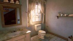 Joels house bathroom1