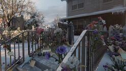 Joels house flowers cards