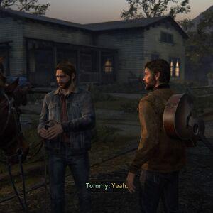 Joel Tommy horses.jpg
