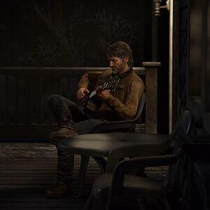 Joel playing guitar on porch.jpg