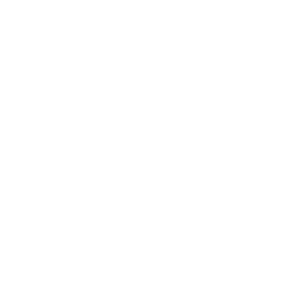 The Order Wiki.png