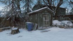 Joels house back shed