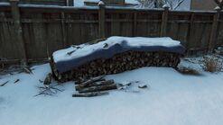 Joels house back logs