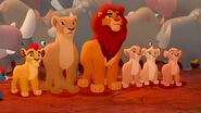 TLG Simba&Pride