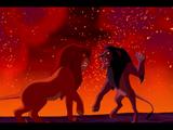 Сражение Шрама и Симбы
