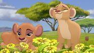 Тиифу и Зури наслаждаються ароматом цветов