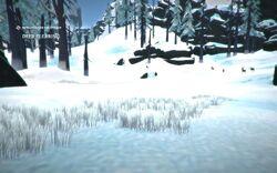 Deer Clearing.jpg