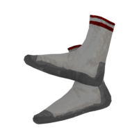 Sports Socks.png