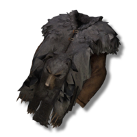 Bearcoat.png