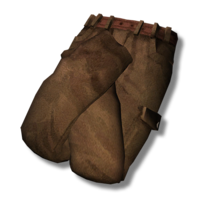 Cargo Pants New.png