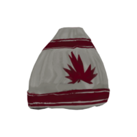 Wool Toque.png