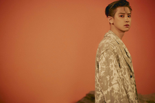 Chanyeol (Don't Fight The Feeling) 2