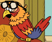 Sergio wearing Alfredo's sunglasses