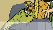 S2E19A Vicious turtle bites pineapple
