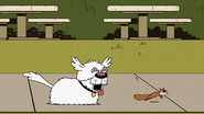 S4E03A Nelson chases the squirrel