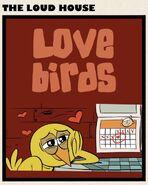 Love Birds square title card