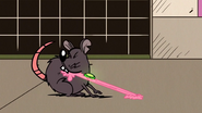 S3E16B Rat eats the Gum