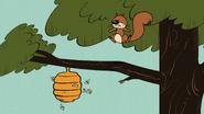 S4E03A Squirrel knocks down a bee hive