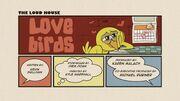 Love Birds.jpeg