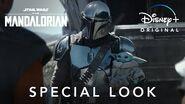 Special Look (Season 2)