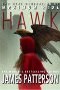 Hawk concept cover