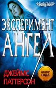 The Angel Experiment (Russian)