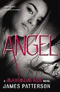 ANGEL (book)