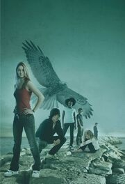 The Flock (Maximum Ride Facebook image).jpg
