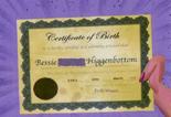 Bessie's birth certificate