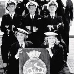 The Navy Lark (Series)