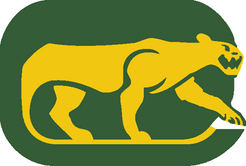 Chicago cougars.png