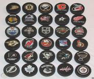 The 30 NHL Teams